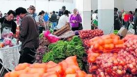 Verduras en aumento: ¿Por qué suben tanto los precios?
