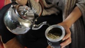 Qué es y cómo se recorre la ruta de la yerba mate en Argentina