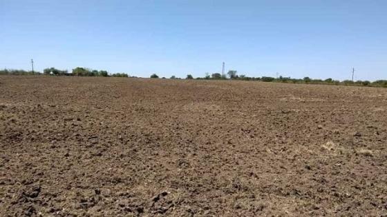 Farer pidió la emergencia agropecuaria para cuatro departamentos entrerrianos