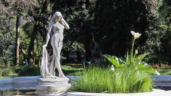 Nueve botánicos que hicieron historia en el desarrollo de la ciencia en Argentina