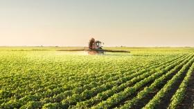 Sector sojero se alista para la tardía cosecha masiva