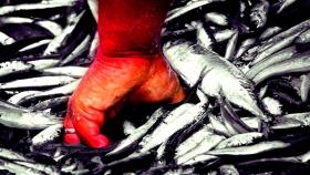 La pesca, un sector exceptuado pero acosado por el colapso de las exportaciones y la caída del mercado interno