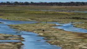 Proyecto inédito busca rescatar las regiones más secas de América Latina