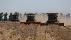 Putin lanza los mercados mundiales de alimentos a la política rusa