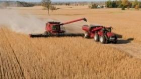 Solo 95.000 ha para culminar la cosecha de soja 2021