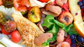 Valorización de los desperdicios de la producción y procesado de tomate, aceituna, patata y cereales