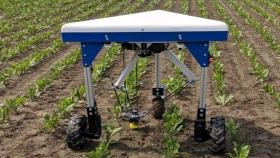 Un robot que arranca las malas hierbas de los cultivos