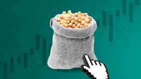 Aprovechá el boom de precios de la soja: así podés invertir tus pesos, sin moverte de tu casa