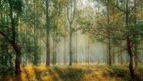 Córdoba: gestión ambiental en las tierras del norte