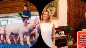 Argentina ratificó la propuesta de instalar granjas inteligentes de producción porcina