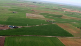 Exportación 2021: la región pampeana es la gran ganadora gracias a los complejos de base agrícola