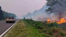 Corrientes: estiman pérdidas millonarias en los aserraderos afectados por incendios