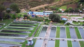 Instalaciones y sistemas de producción en el cultivo de la trucha