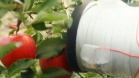 Los robots cosechadores de manzanas podrían llegar pronto a los Estados Unidos