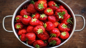 Frutillas para todo el año