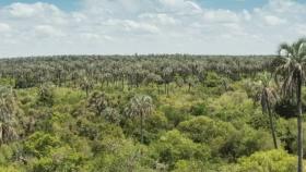 El Palmar: la historia de un paisaje cautivante