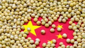 La demanda de ganado impulsa las importaciones de soja y granos de China