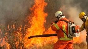 Ley Manejo del Fuego: obtuvo dictamen el proyecto que impone limitaciones a las zonas agrícolas incendiadas