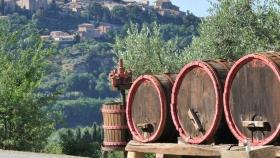 Uva antigua revivida en Toscana