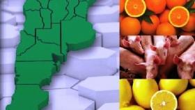 Las economías regionales muestran leves mejoras en algunos sectores