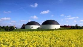 Canadá: buscan invertir U$S 2.400 MM para instalar un complejo de crushing y producción de biodiesel de canola
