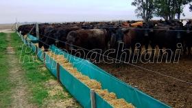 Comederos de lona para ganado de Rappachiani