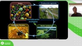 Aporte de los polinizadores a los sistemas de producción