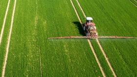 La agricultura india contribuye a los brotes verdes de la economía india con una tasa de crecimiento del 3,4% a pesar de la pandemia de COVID-19