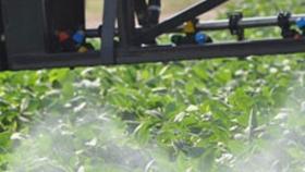 Continúa suspendida la aplicación de agroquímicos en la provincia de Buenos Aires
