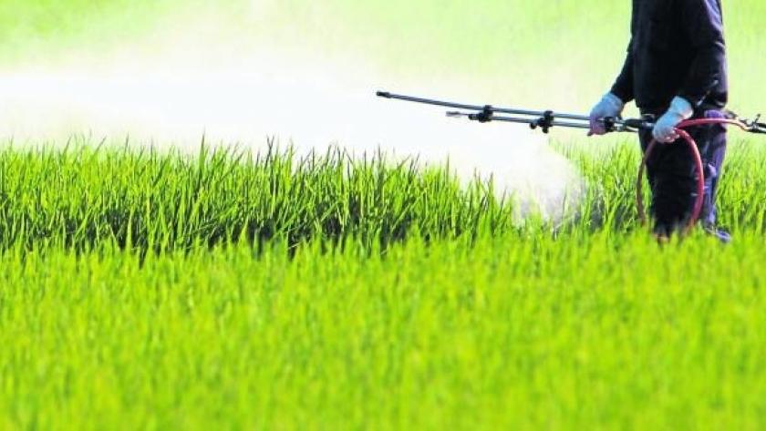 Alerta por la falta de agroquímicos