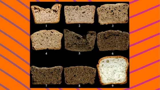Desarrollan una nueva premezcla con trigo sarraceno y semillas de chía para elaborar pan sin gluten