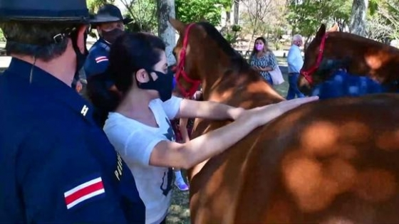En Costa Rica, los caballos curan dolores y tristezas