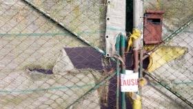 Preocupación por el cierre y los despidos masivos en Avicomar