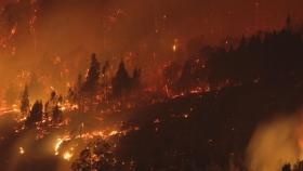 Fuego descontrolado en Chubut y Río Negro: habló Cabandié y hará una denuncia penal por intencionalidad