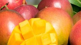 Mango: estrategias para promover su consumo en el mercado de EEUU
