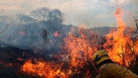 ¿Por qué cada año se registran en promedio más de 1.000 incendios
