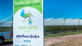 El sector arandanero reafirmó su lucha contra el trabajo infantil en los campos