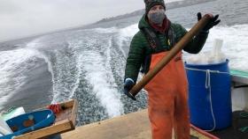 Una empresa estadounidense lucha contra el cambio climático cultivando algas
