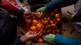 ¿Por qué los precios del jugo de naranja aumentan en todo el mundo?