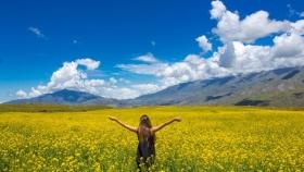 6 rutas naturales imperdibles en Argentina