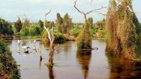 El Bañado La Estrella, una de las 7 maravillas argentinas