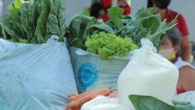 Planifican tareas conjuntas para formalizar la agricultura familiar en Chaco