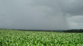 De naranja a verde: notoria mejora de las reservas de agua tras las lluvias