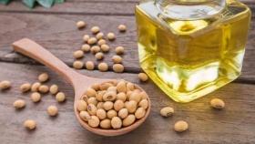 Soja: Viterra lidera las exportaciones de harina y aceite