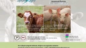 DynamixAgro: piensos para animales de granja, bovinos, porcinos y aves