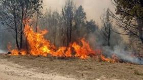 Lanzan un plan para restaurar las 37.000 hectáreas afectadas por los incendios en Jujuy