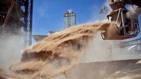 En mayo, la agroexportación liquidó 3,5 mil millones de dólares