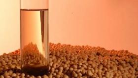 Salió subsidio de 950 millones de pesos para subdistribuidoras de gas: Productores de soja deberán seguir esperando