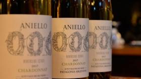 Bodega Aniello lanza el primer vino argentino que habla