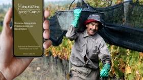 Trabajadores rurales : lanzan aplicación para celulares